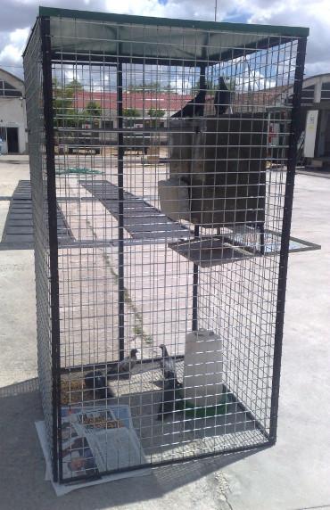 jaula de captura aves