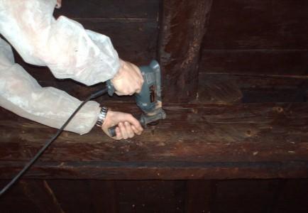 tratamiento madera termitas quimico convencional